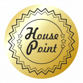 Mini Metallic Gold House Point Stickers