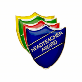 Headteacher Award Pin Badge - Shield