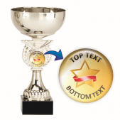 Silver Cup Trophy - Gold Star Design