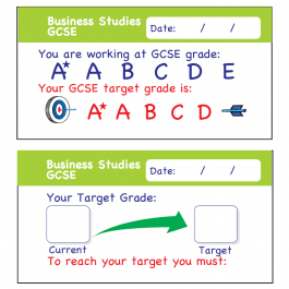 Business Studies GCSE Assessment Stickers