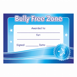 Anti-Bullying Certificate 2
