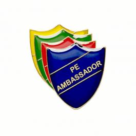 An image of PE Ambassador Pin Badge - Shield