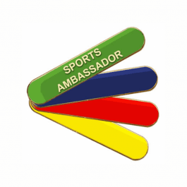 An image of Sports Ambassador Pin Badge - Bar