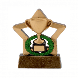 Gold Trophy Mini Star Trophy