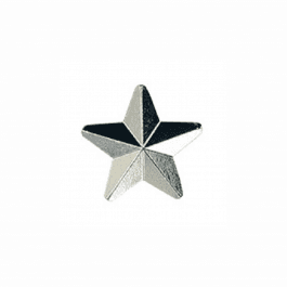 An image of Silver Star Badge