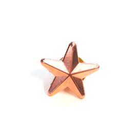 Bronze Star Badge