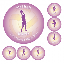 Netball Merit Stickers