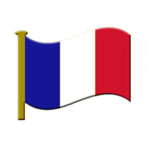 Lapel Badge - French Flag